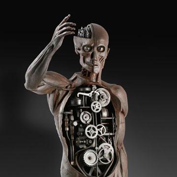 Human Mechanics n°2